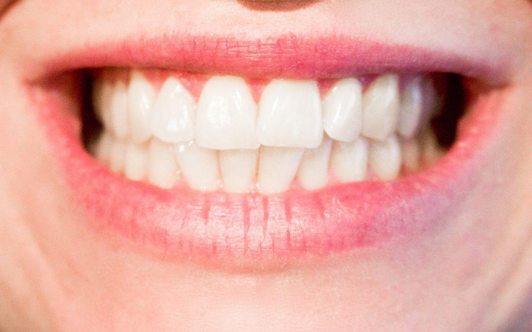 Νεογιλά, μόνιμα δόντια και φρονιμίτες